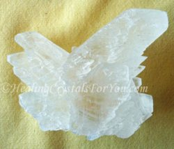 White Angel Wing Selenite Crystals