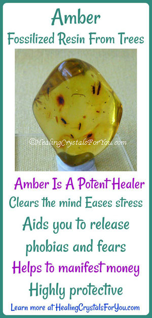 Amber Fossilized Resin From Trees