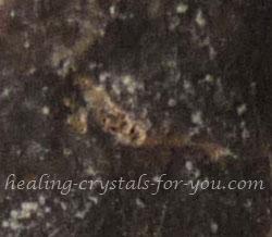 Black Calcite Spirals