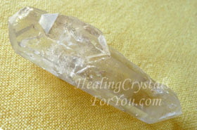 Dolphin Crystal