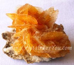 Golden Selenite Cluster