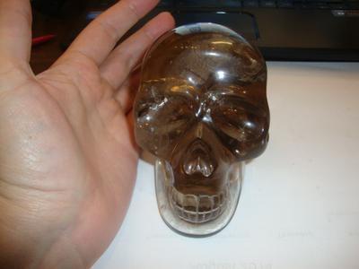 View of skull