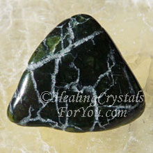 Peridot with Magnetite & Chromite
