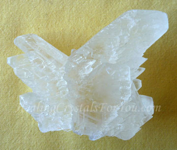 Fishtail Selenite