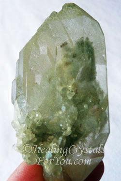 Chlorite Phantom Quartz